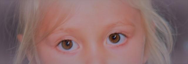 ogen (2)