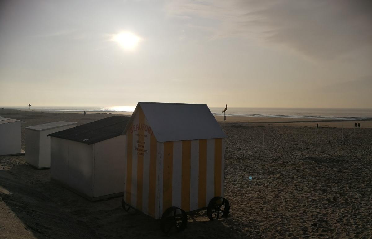 Op vakantie naar de Belgische zee, da's een steengoed idee!  En wel hierom...